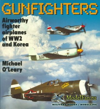 Osprey - Colour Series - Gunfighters. Airworthy Fighter Airplanes of World  ...