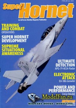 AirForces Monthly - Profile #3 - Super Hornet