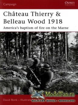 Osprey - Campaign 177 - Chateau Thierry & Belleau Wood 1918. America's Bap ...