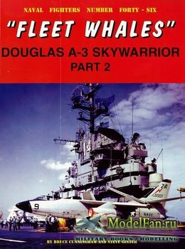 Naval Fighters №46 -