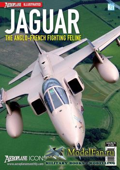 Aeroplane Icons - Jaguar: The Anglo-French Fighting Feline
