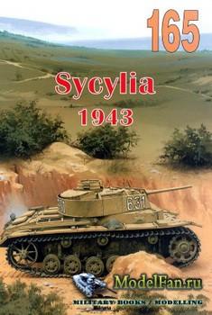 Wydawnictwo Militaria №165 - Sycylia 1943