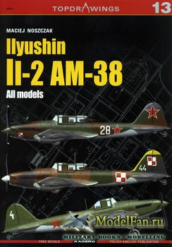 Kagero Topdrawings №13 - Ilyushin Il-2 AM-38: All Models