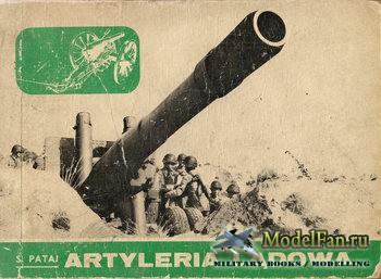 Artyleria Ladowa 1871-1970 (Stefan Pataj)