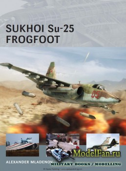 Osprey - Air Vanguard 9 - Sukhoi Su-25 Frogfoot