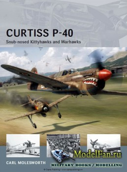 Osprey - Air Vanguard 11 - Curtiss P-40: Snub-nosed Kittyhawks and Warhawks