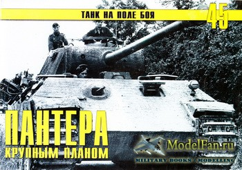 Торнадо - Танк на поле боя №45 - Пантера крупным планом (Часть 7)