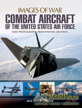 Combat Aircraft of the United States Air Force (Michael Green)