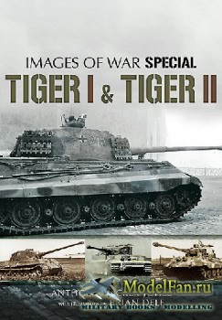 Tiger I and Tiger II (Anthony Tucker-Jones, Brian Delf)