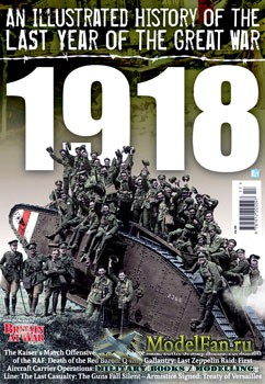 An Illustrated History of the Last Year of the Great War: 1918